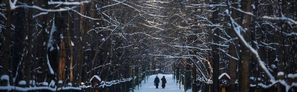 Moscú bajo el frío siberiano. Dos moscovitas pasean por un parque. (Foto Sputnik News).